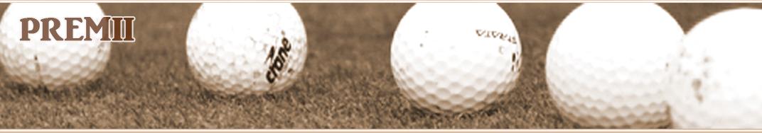 Premii golf